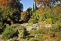 Botanischer Garten der Universität Zürich 2011-10-24 14-50-02.JPG