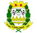 Brasão Capelinha MG.png