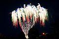 Bray Fireworks (6848273704).jpg