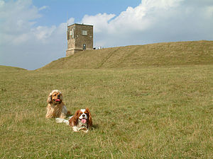 Bredon Hill - The top of Bredon Hill, with Parsons Folly and the inner rampart of Kemerton Camp
