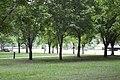 Brengues - panoramio (27).jpg