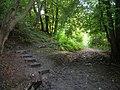 Bridleway Junction - geograph.org.uk - 933377.jpg