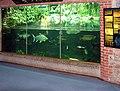 Bristol.zoo.aquarium.arp.jpg