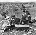 British Forces in the Middle East, 1945-1947 E31735.jpg