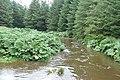 Bunowen River - geograph.org.uk - 967455.jpg