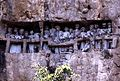 Burial Site 2.jpg