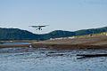Bush plane coming in for landing, Hallo Bay.jpg