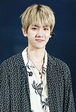 Byun Baek-hyun at Lotte Family Concert on June 23, 2018 (1).jpg