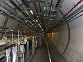CERN Large Hadron Collider.jpg