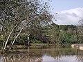 CHADWICK LAKES - panoramio (8).jpg