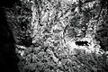 Cachoeirão (Vale do Pati) - VIsta de cima.jpg