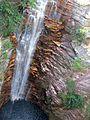 Cachoeira do Buracão.JPG