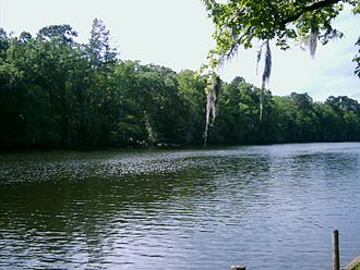Caddo Lake - The Channel was used by Steamboats to reach the port at Jefferson, until water levels fell after the removal of the Great Raft.