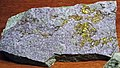Calaverite-fluorite vein (Cripple Creek Diatreme, Early Oligocene, 32 Ma; Cripple Creek Mining District, Colorado, USA) 3.jpg