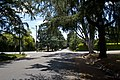 California Landmark No. 990 Christmas Tree Lane - panoramio (2).jpg