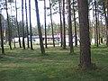Camping place - panoramio.jpg