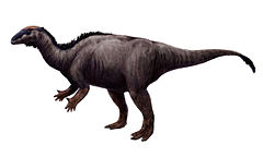 alt=Description de l'image Camptosaurus.jpg.