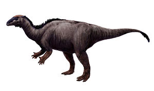 Kimmeridgian - Camptosaurus