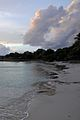 Caneel Bay Scott Beach 2.jpg