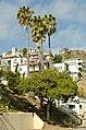 Catalina Island and Ensenada Cruise - panoramio (95).jpg