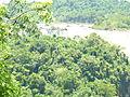 Cataratas en 2013 con vegetacion 3.JPG