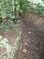Ceint station platform and trackbed - geograph.org.uk - 1473160.jpg