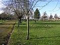 Cemetery Drive - geograph.org.uk - 130203.jpg