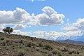 Centennial Park - panoramio (30).jpg