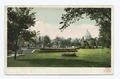 Central Park and State Capitol, St. Paul, Minn (NYPL b12647398-62780).tiff