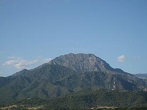 Santa Marta montane forests - Cerro Murillo