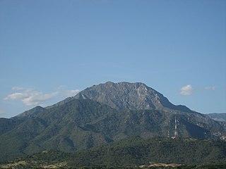 Santa Marta montane forests