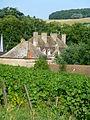 Château de Sassangy en été.JPG