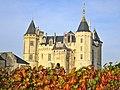 Château de Saumur au soleil automnal.jpg