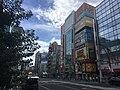 Chūō-dōri in Ueno.jpg