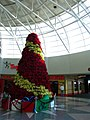Charolette Airport Poinsetta Christmas Tree (6543933993).jpg