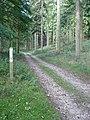 "Chase Woods ""Permissive"" Footpath - geograph.org.uk - 260547.jpg"