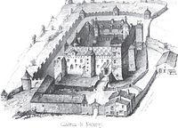 Chateau de Nozeroy.jpg