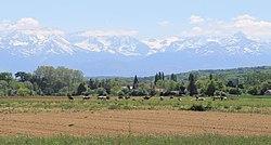 Chelle-Debat (Hautes-Pyrénées) 1.jpg