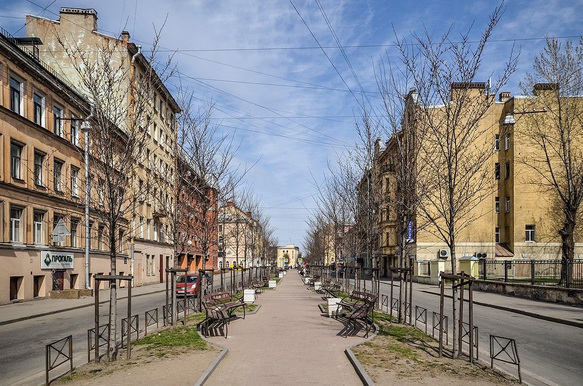 черняховского 86 санки