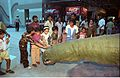 Children Touching Apatosaurus - Dinosaurs Alive Exhibition - Science City - Calcutta 1995-June-July 407.JPG