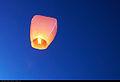 Chinese lantern (7914625430).jpg