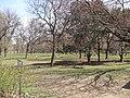 Chorley Park from northwest corner.JPG