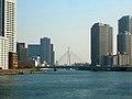 Chuo Ohashi, Sumida river, Tokyo - panoramio.jpg