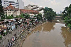 Ci Liwung - Lower Ci Liwung at Jakarta