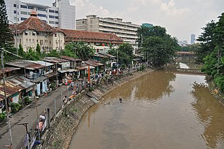 river in Indonesia