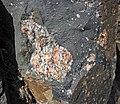 Clast-rich impact pseudotachylite (Sudbury Breccia, Paleoproterozoic, 1.85 Ga; Windy Lake Northwest roadcut, Sudbury Impact Structure, Ontario, Canada) 31 (32796284227).jpg