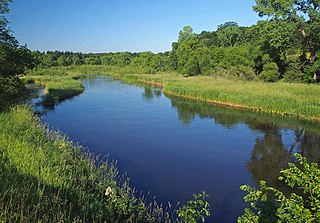 Clearwater River (Mississippi River tributary) river in Stearns County, United States of America