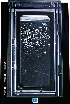 Background radiation - Cloud chambers can be used to visualize the background radiation