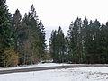 Col du Las en hiver (2).jpg