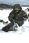 Cold Weather Survival Training DVIDS145996.jpg